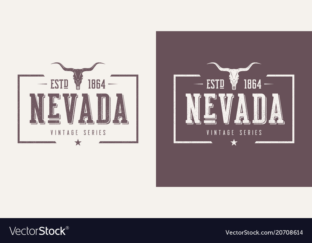 Nevada state textured vintage t-shirt and
