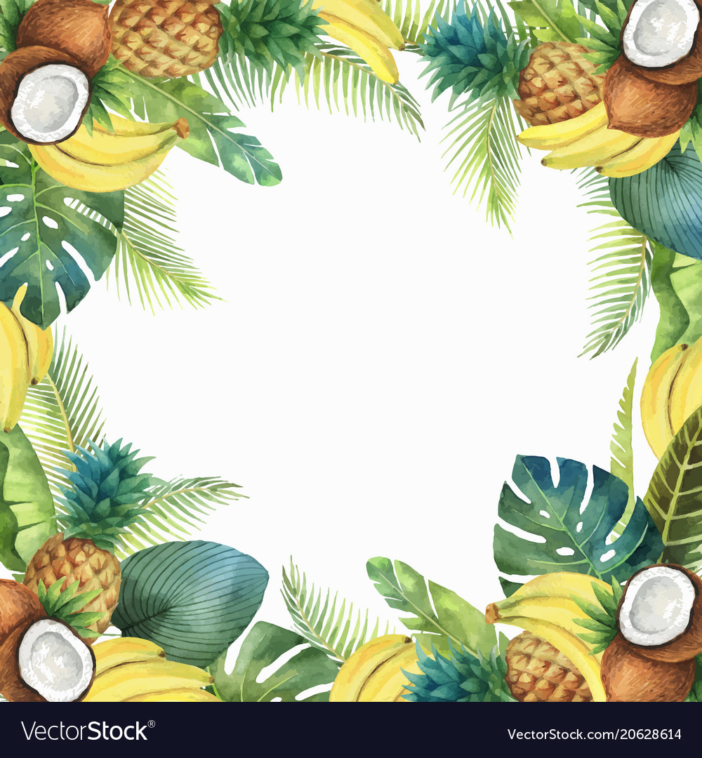 Watercolor tropical card of fruits and palm vector image