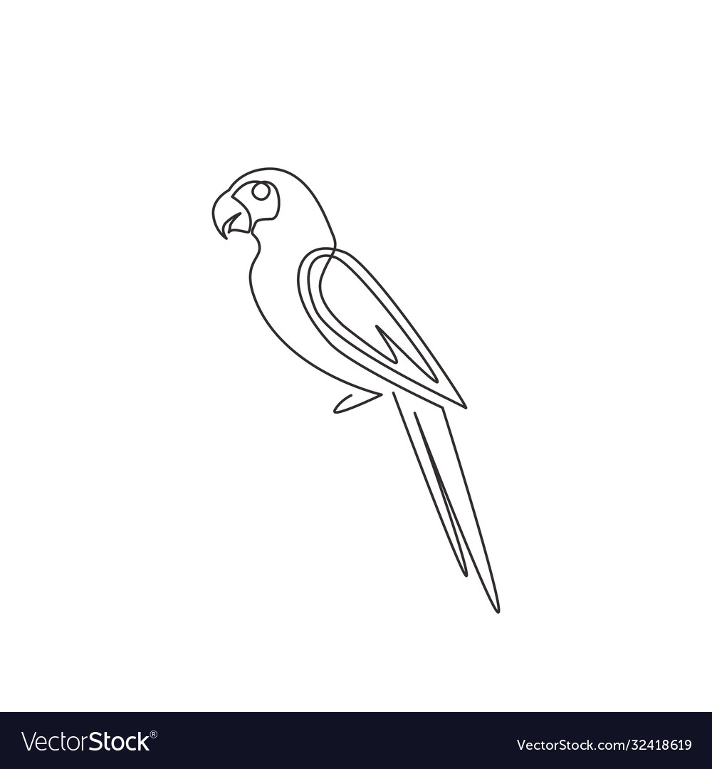 One continuous line drawing cute parrot bird