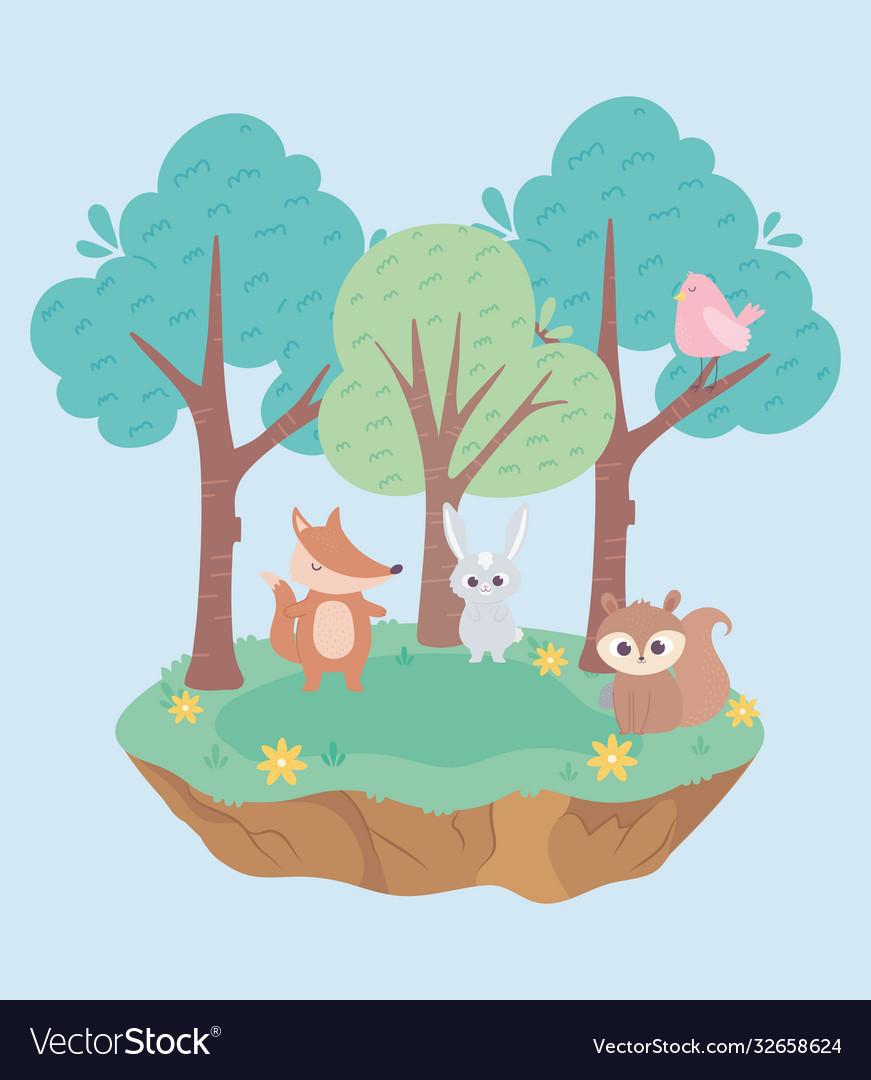 Cute little rabbit fox bird and squirrel animals