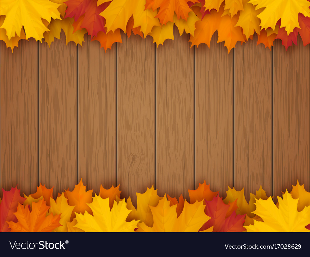 Border from fallen maple leaves vector image
