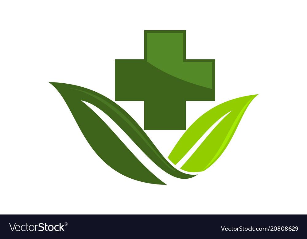 Medial herbal logo design template Royalty Free Vector Image
