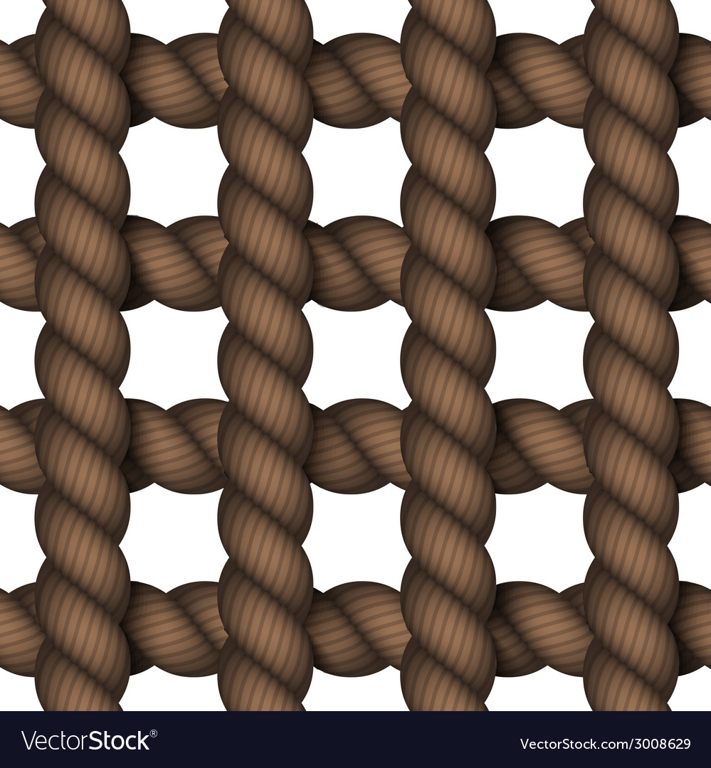 Modern rope on white background vector image