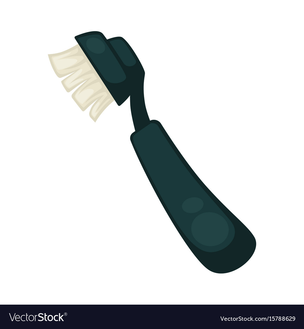 Toothbrush with convenient black plastic handle vector image