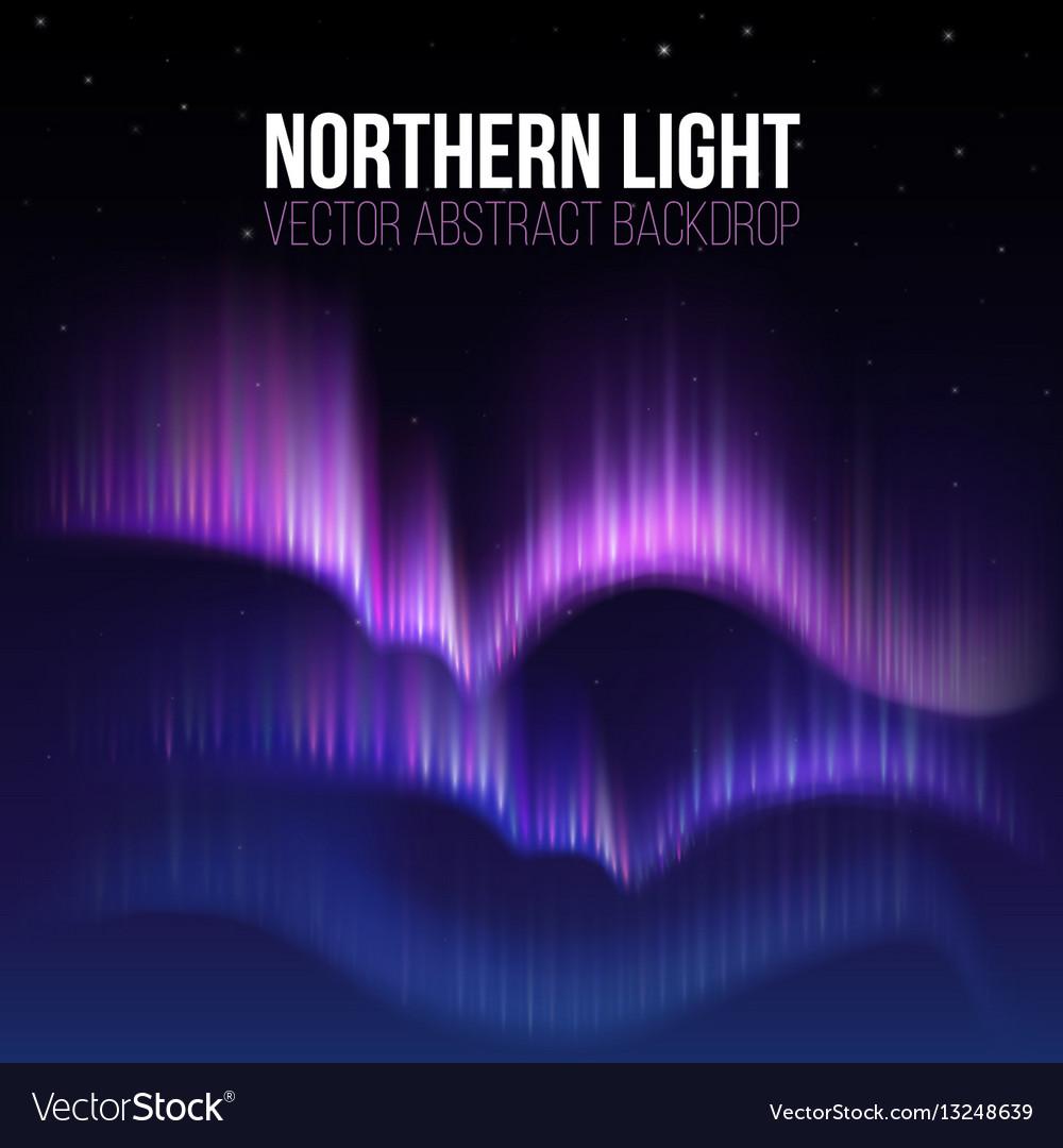 Arctic aurora northern lights in polaris alaska vector image