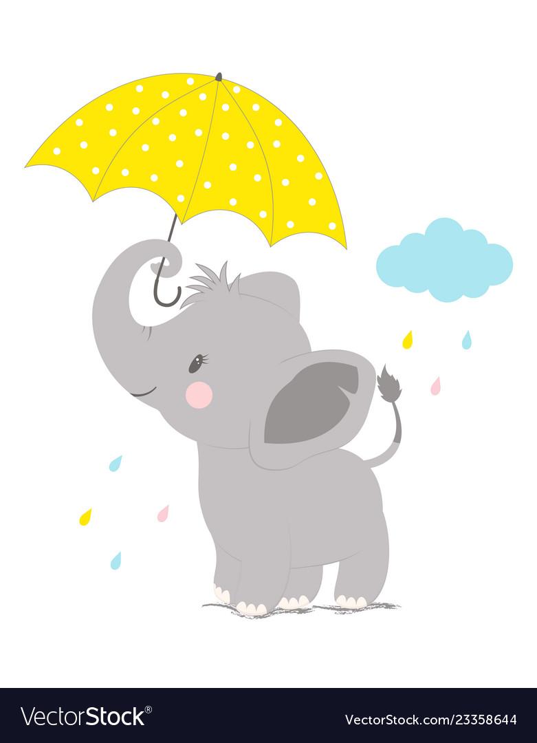 Elephant under umbrella