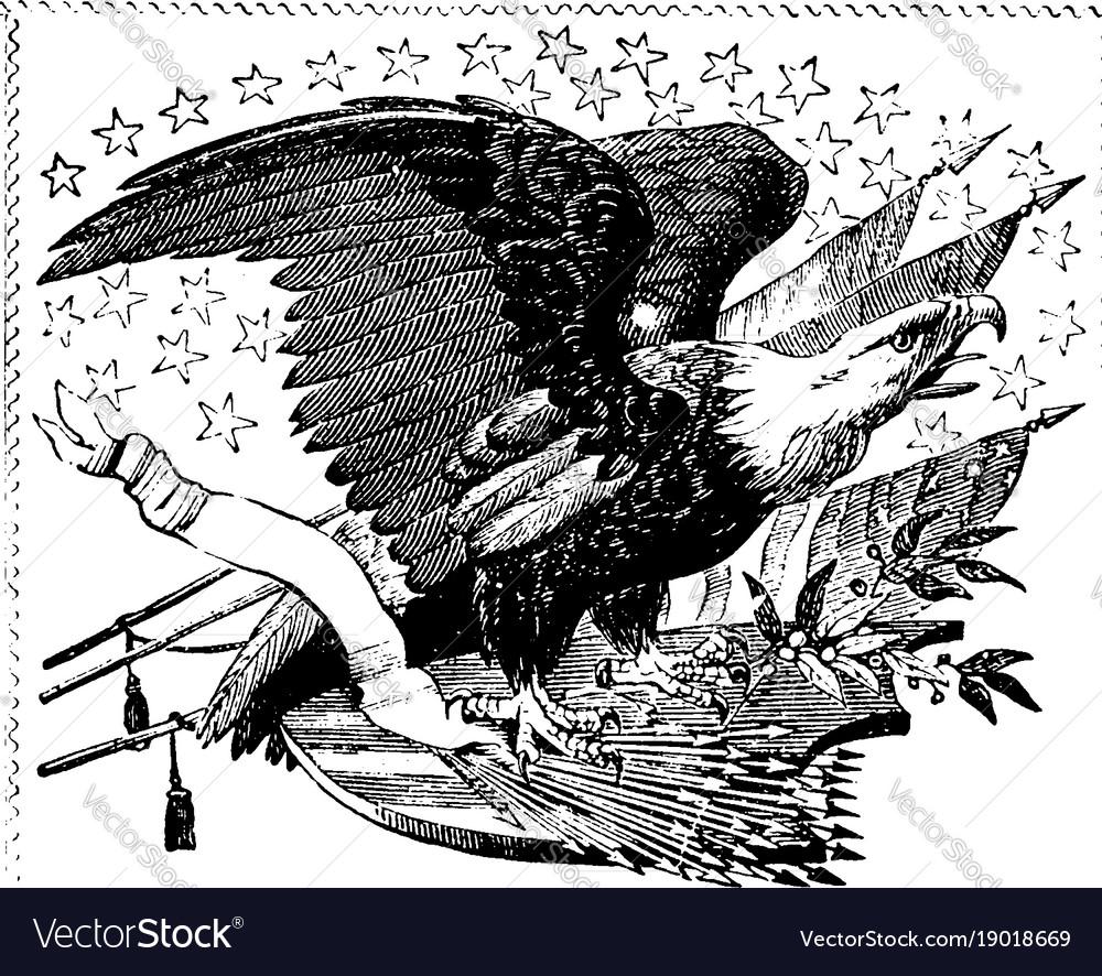 american eagle vintage royalty free vector image  vectorstock