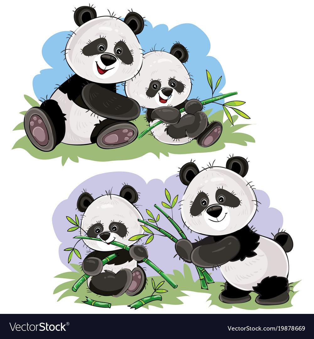 Panda bear characters cartoon