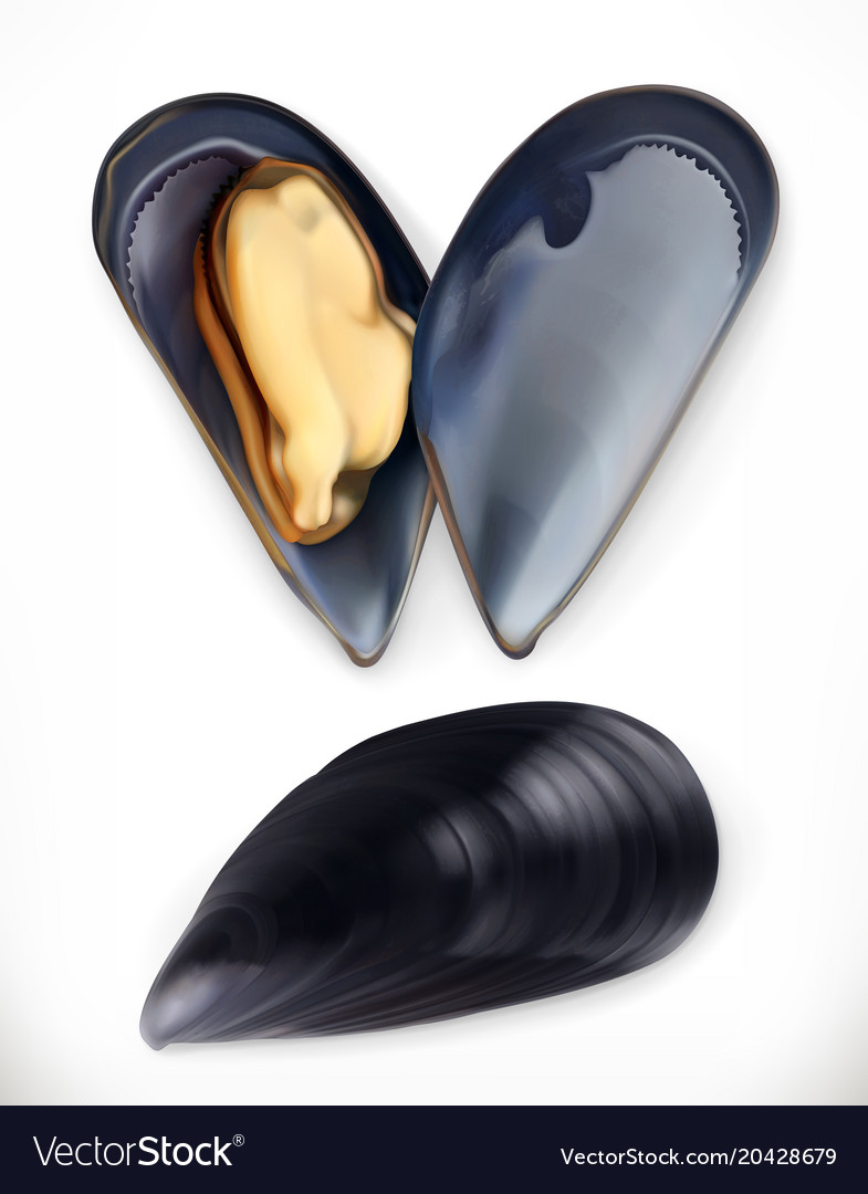 Mussels 3d icon seafood realism style