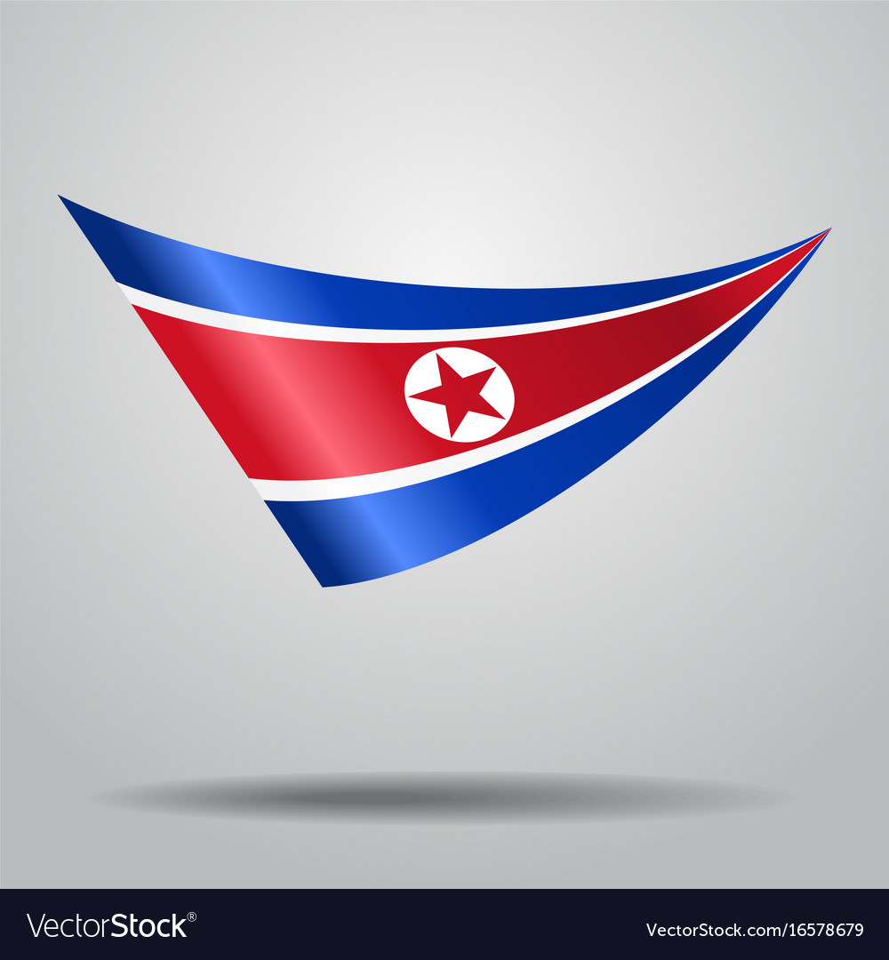 North korean flag background vector image