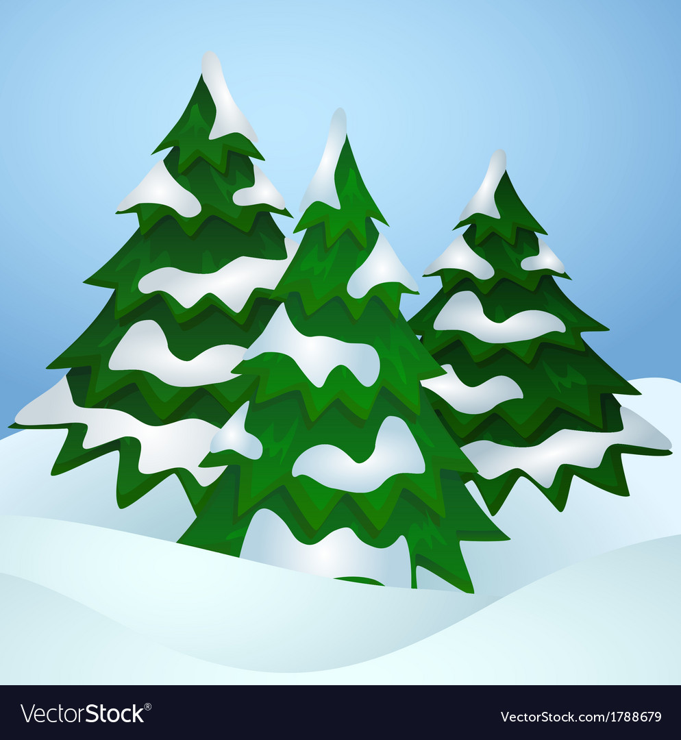 pine trees covered with snow royalty free vector image