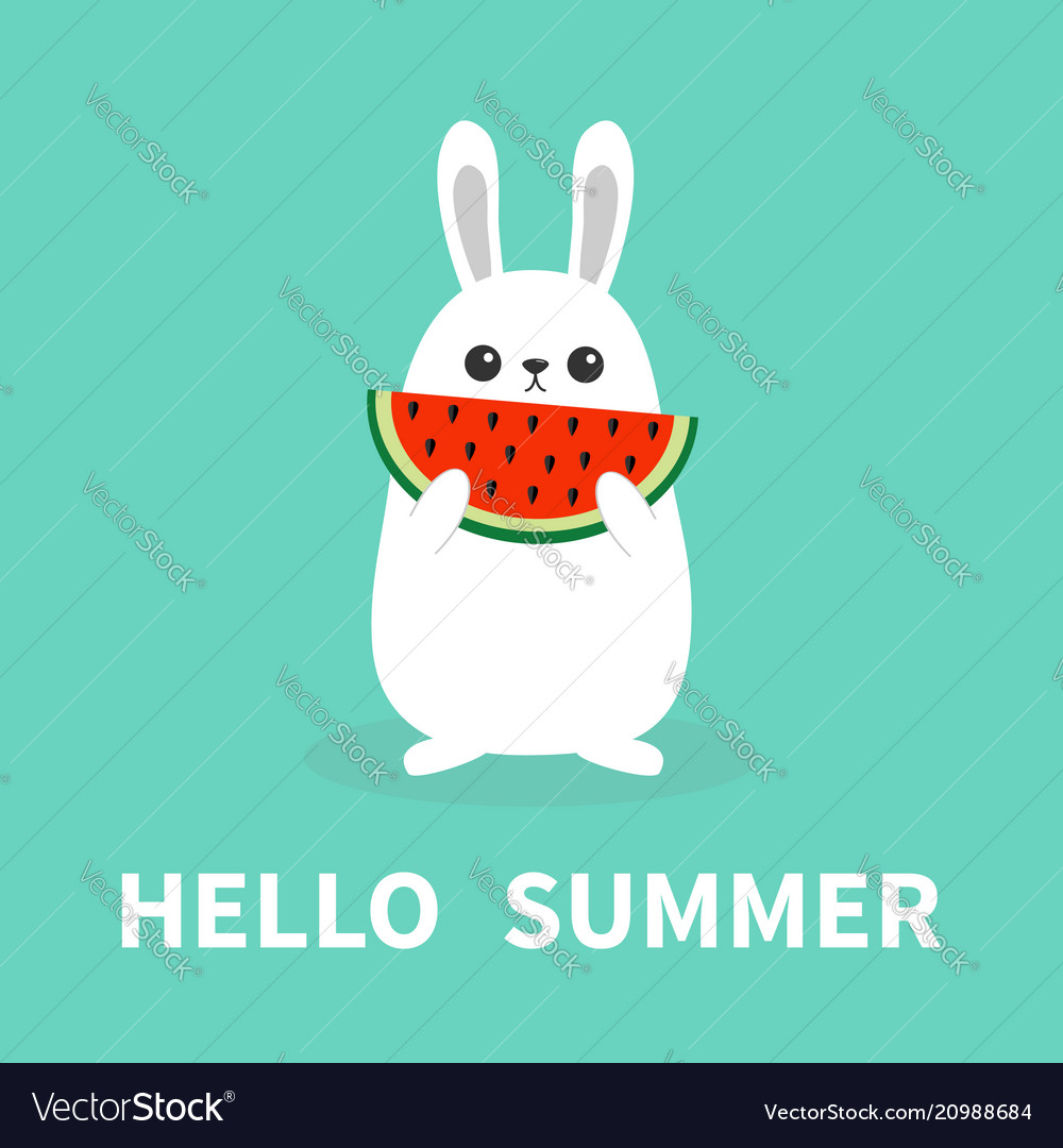 Hello summer white bunny rabbit holding eating