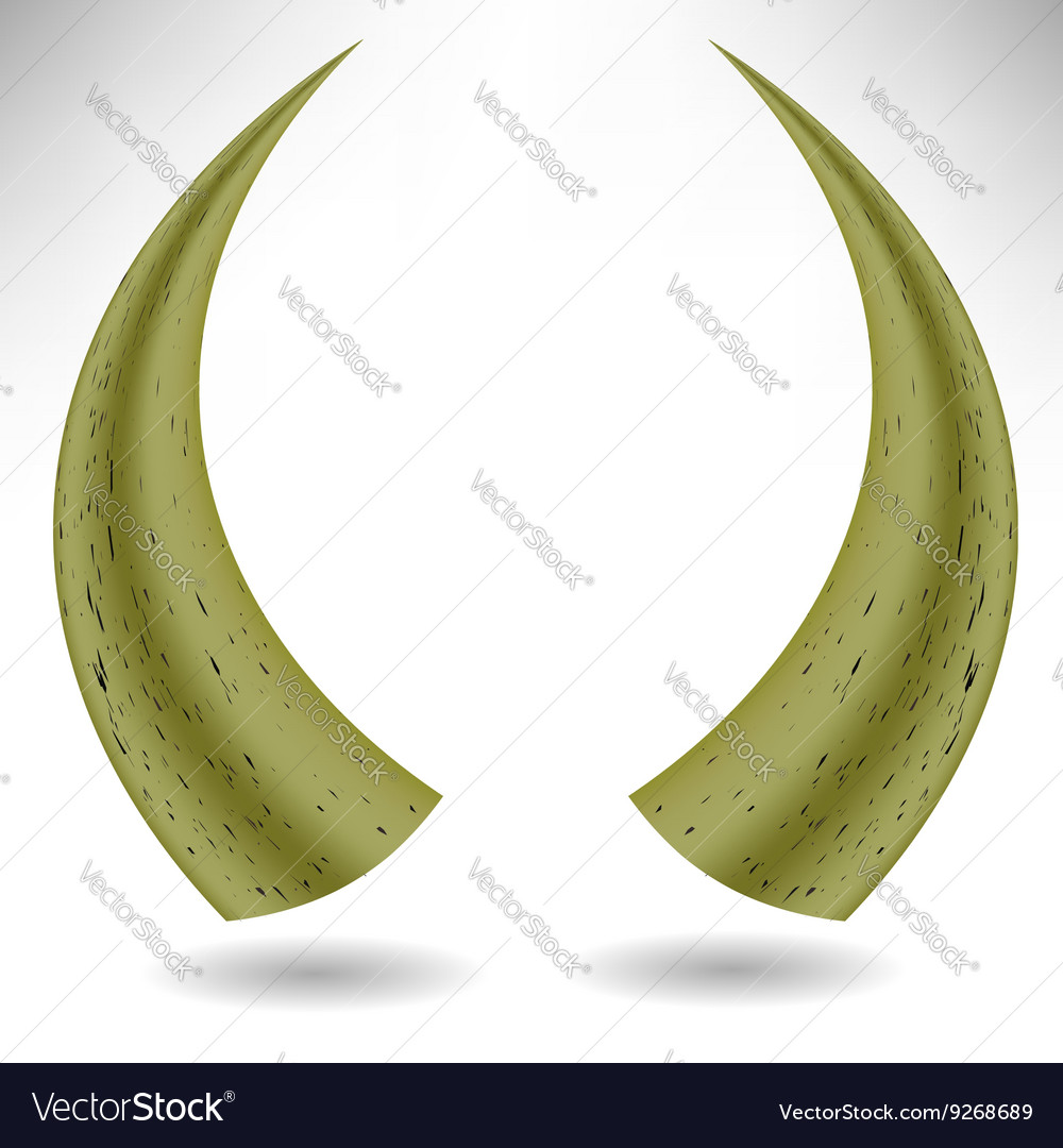 Animal Horns Isolated