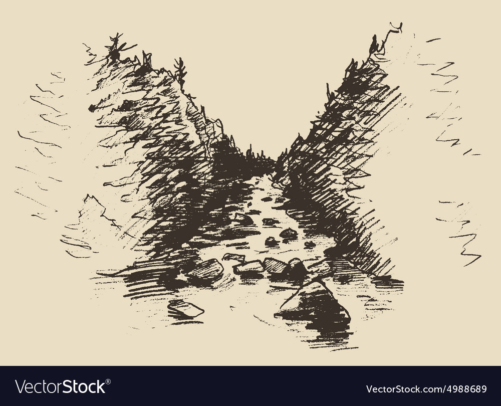 Hand drawn landscape with river and fir forest