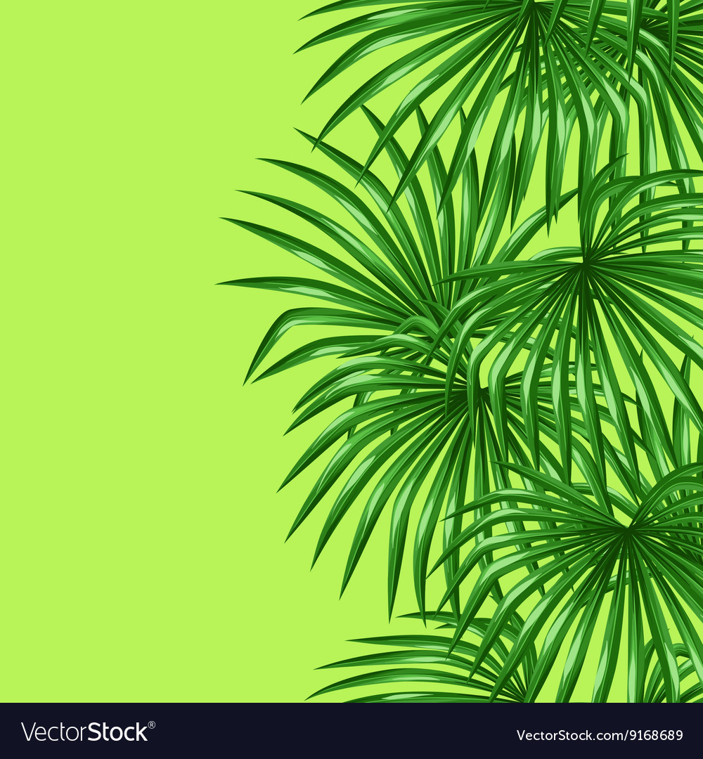 Seamless pattern with palms leaves Decorative