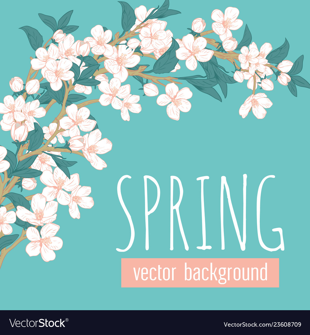 Branches with flowers on blue turquoise background