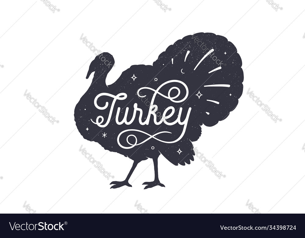 Turkey vintage retro print
