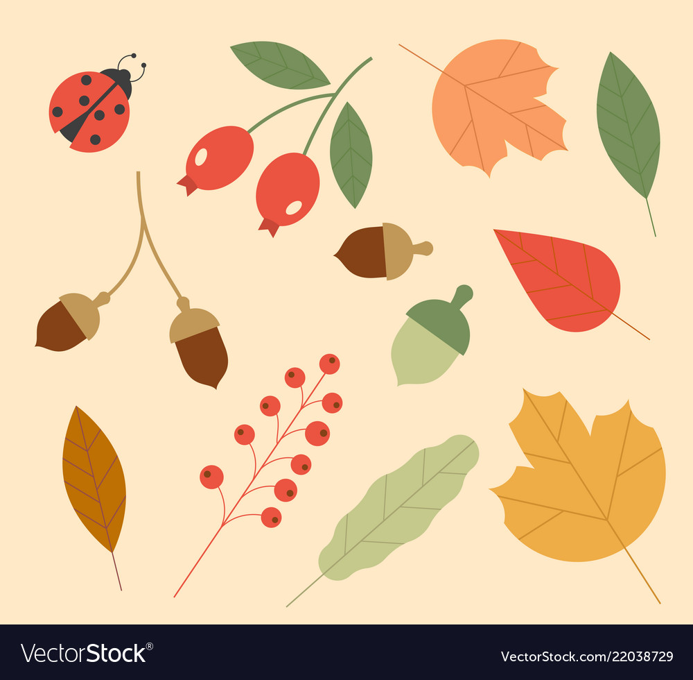 Icons of autumn set of colorful leaves