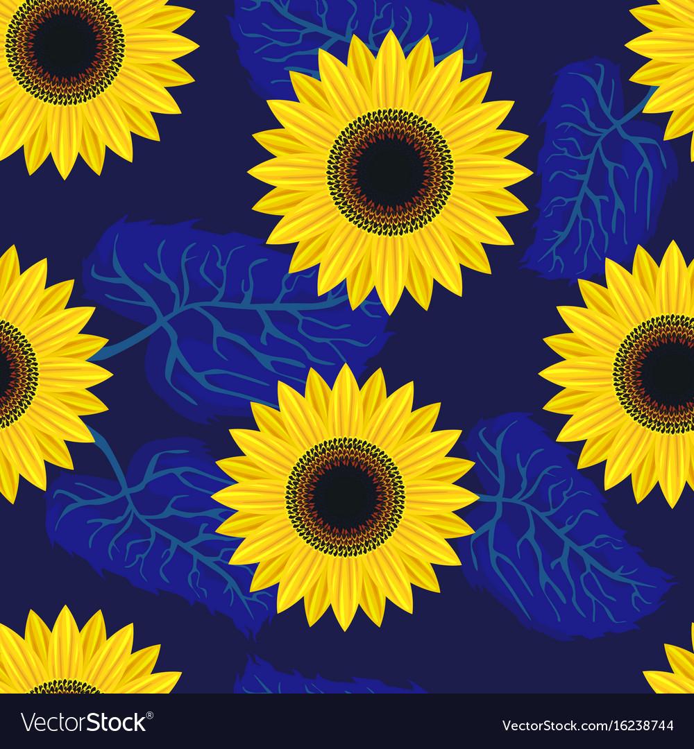 Seamless pattern graphic sunflower