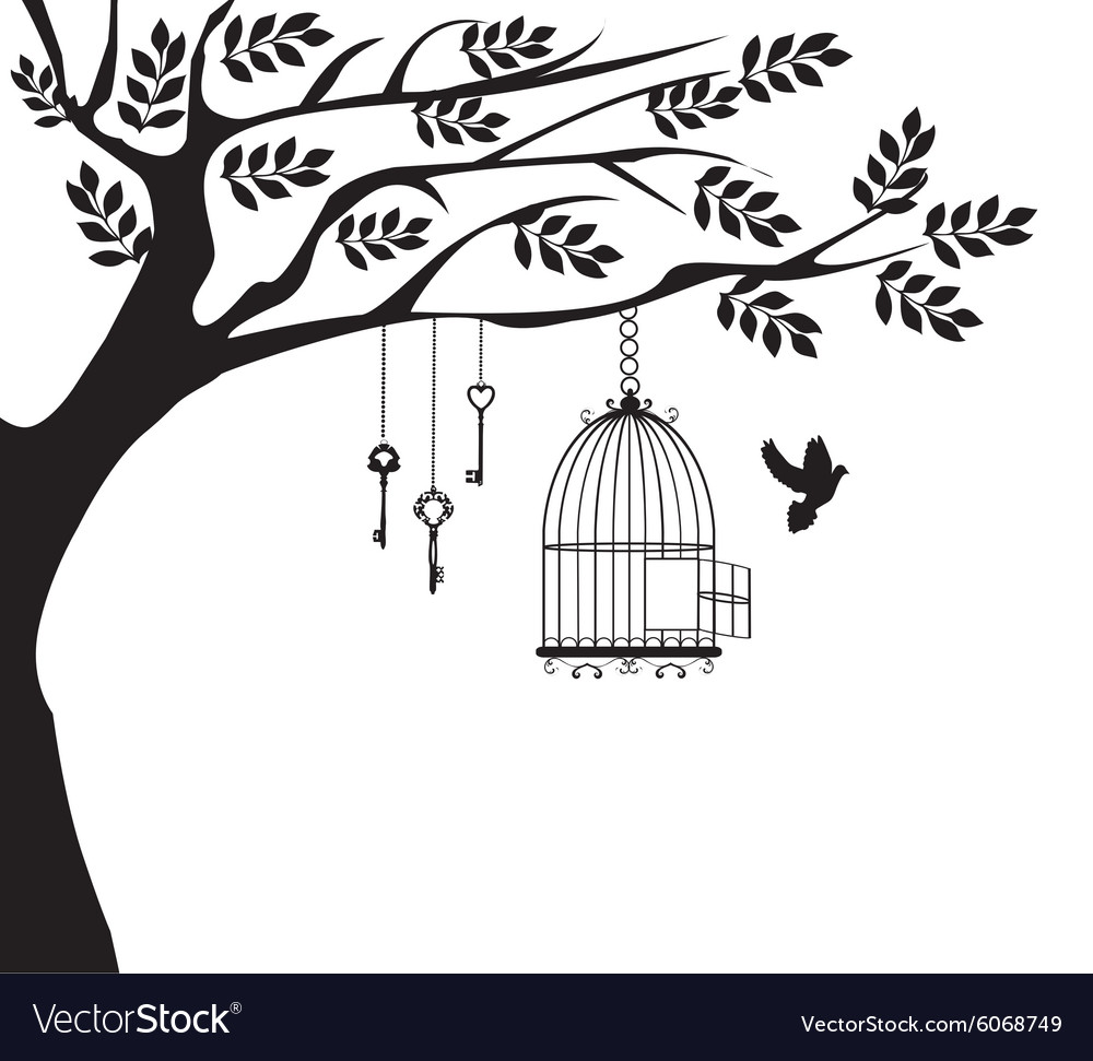 Bird cage dove vector image