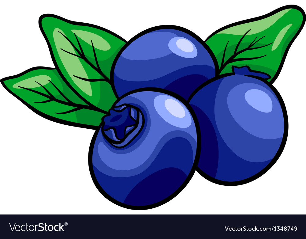 Blueberry fruits cartoon Royalty Free Vector Image