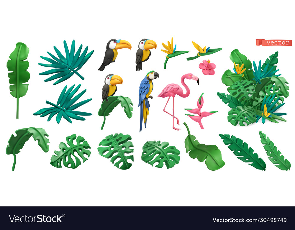 Tropical plants and flowers exotic birds toucan
