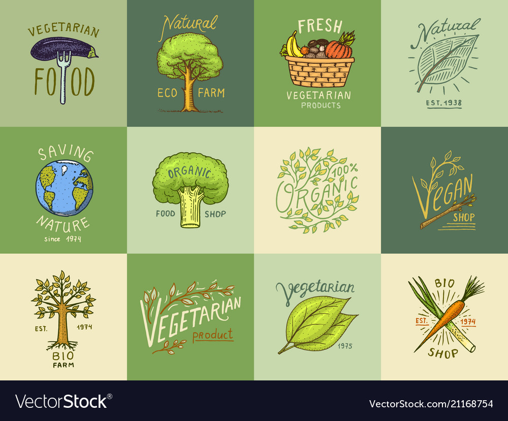 Healthy organic food logos set or labels and