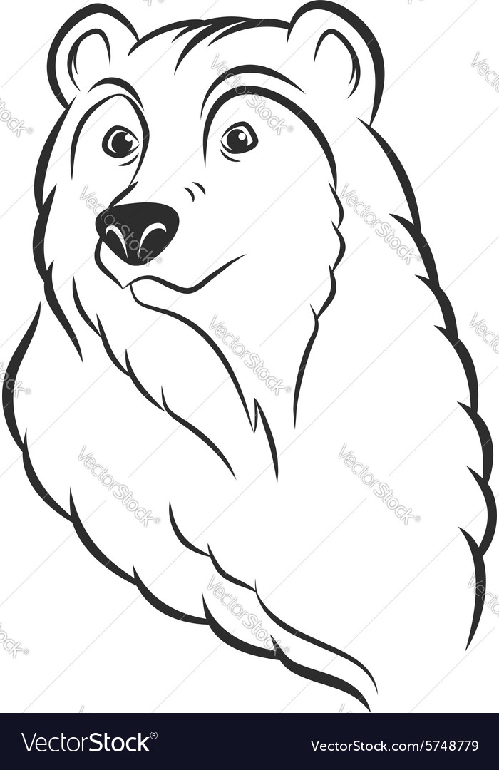 Bear head logo template mascot emblem