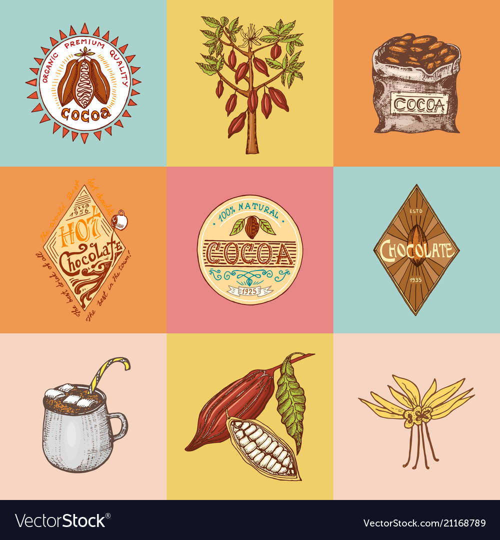 Cocoa beans and hot chocolate logos modern