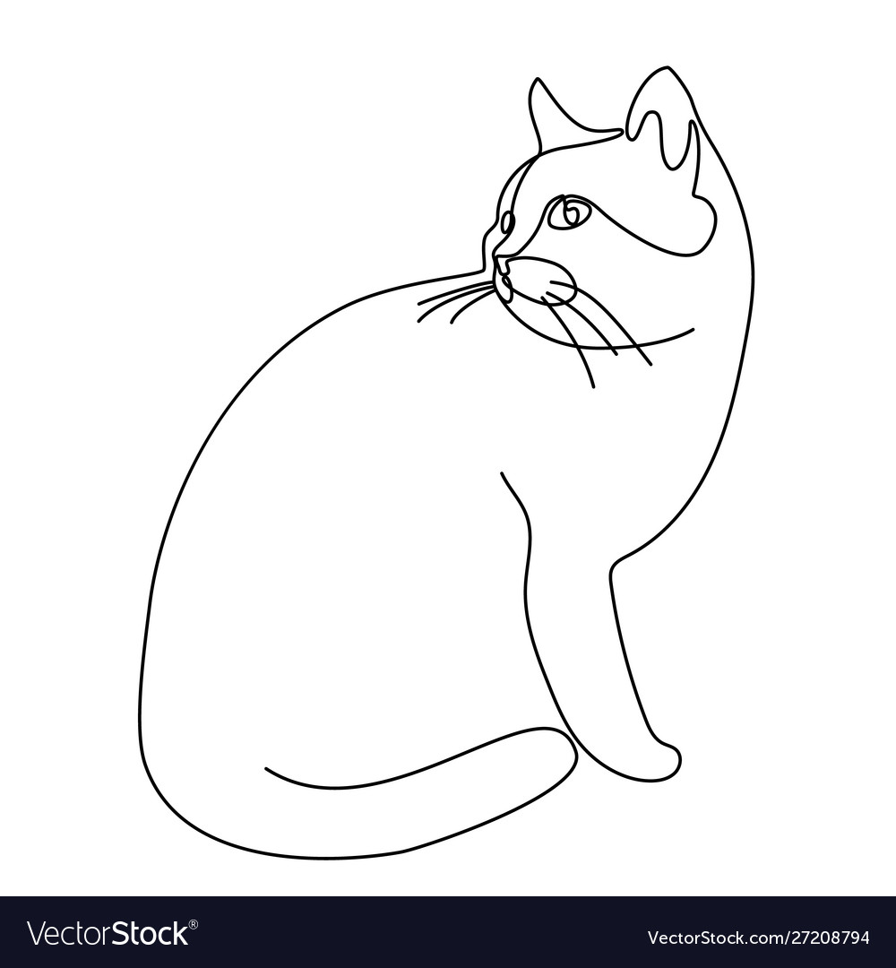 Continuous line drawing cat