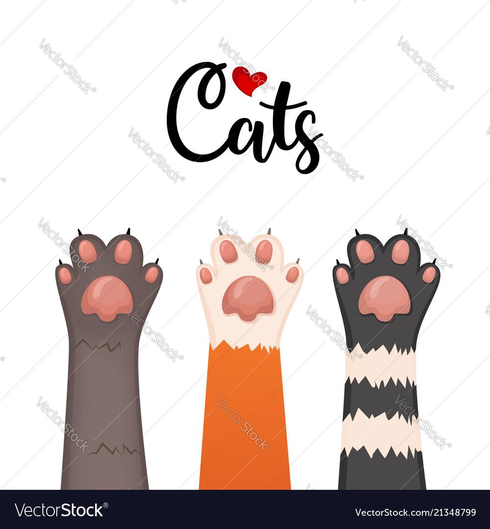 Cats background kitten cartoon paws set