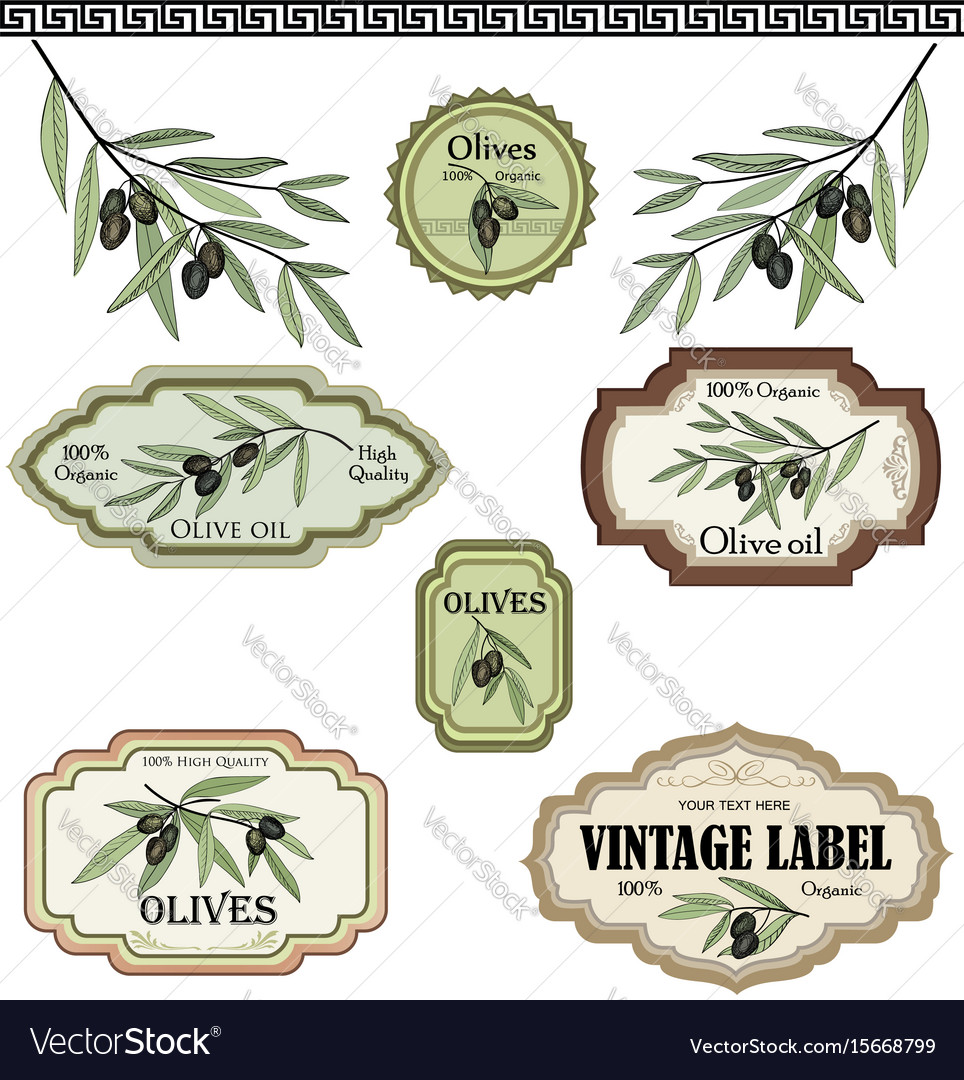 Vintage olive labels set organic food colored Vector Image