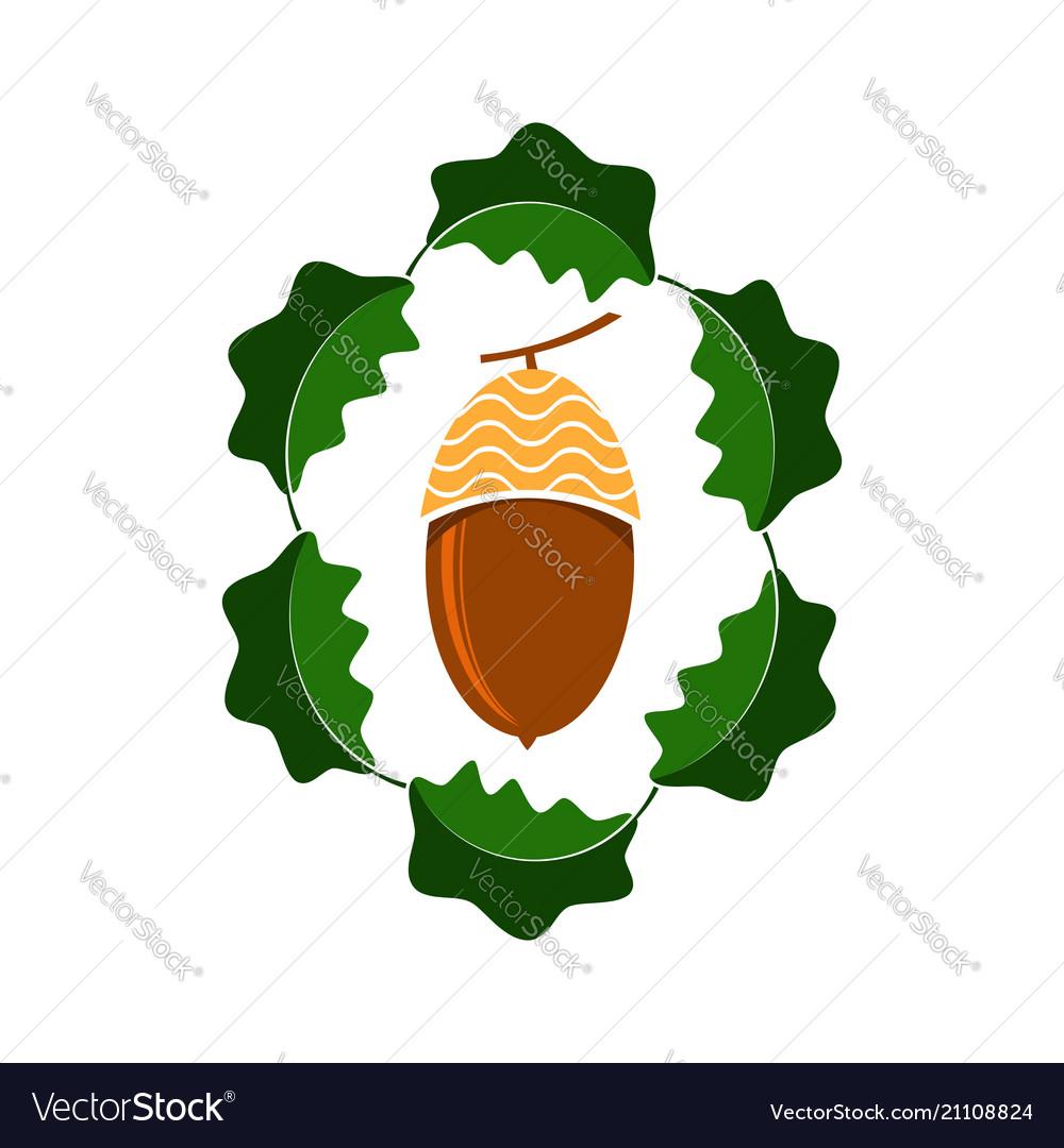 Ripe acorn icon autumn oak nut and leaves logo