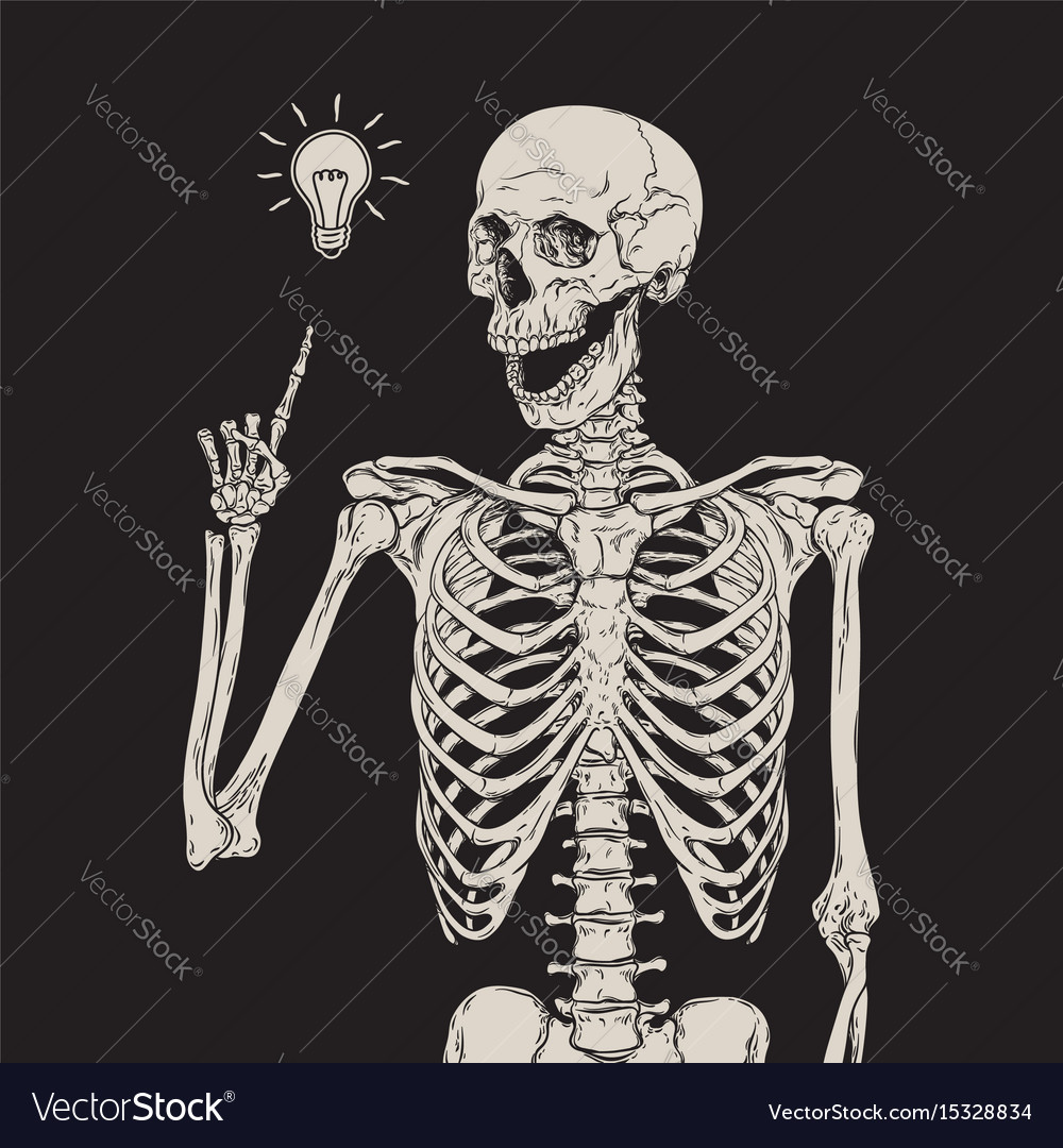 Human skeleton has an idea isolated over black