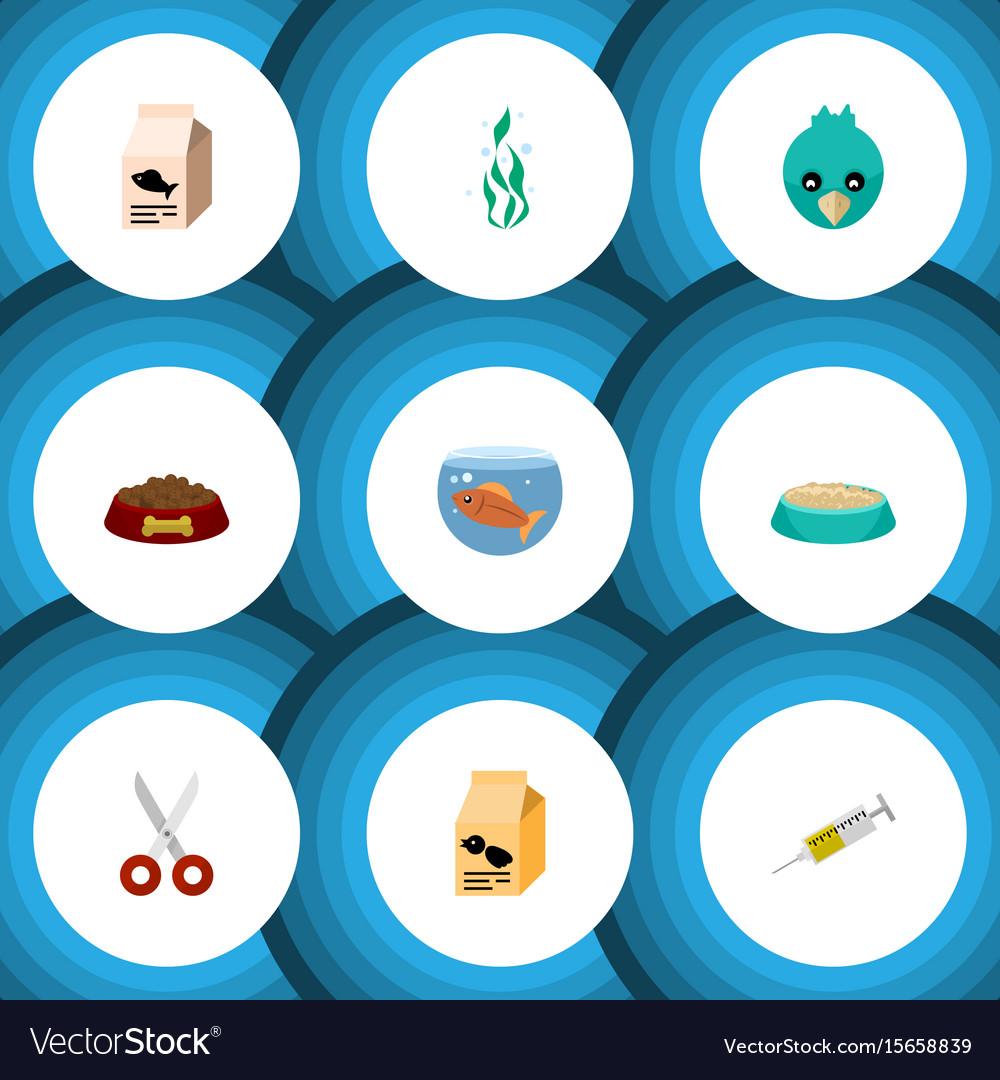 Flat icon pets set of dog food feeding shears