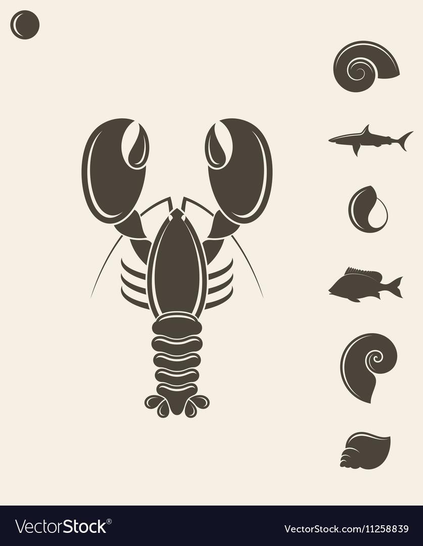 Shell Lobster Fish vector image