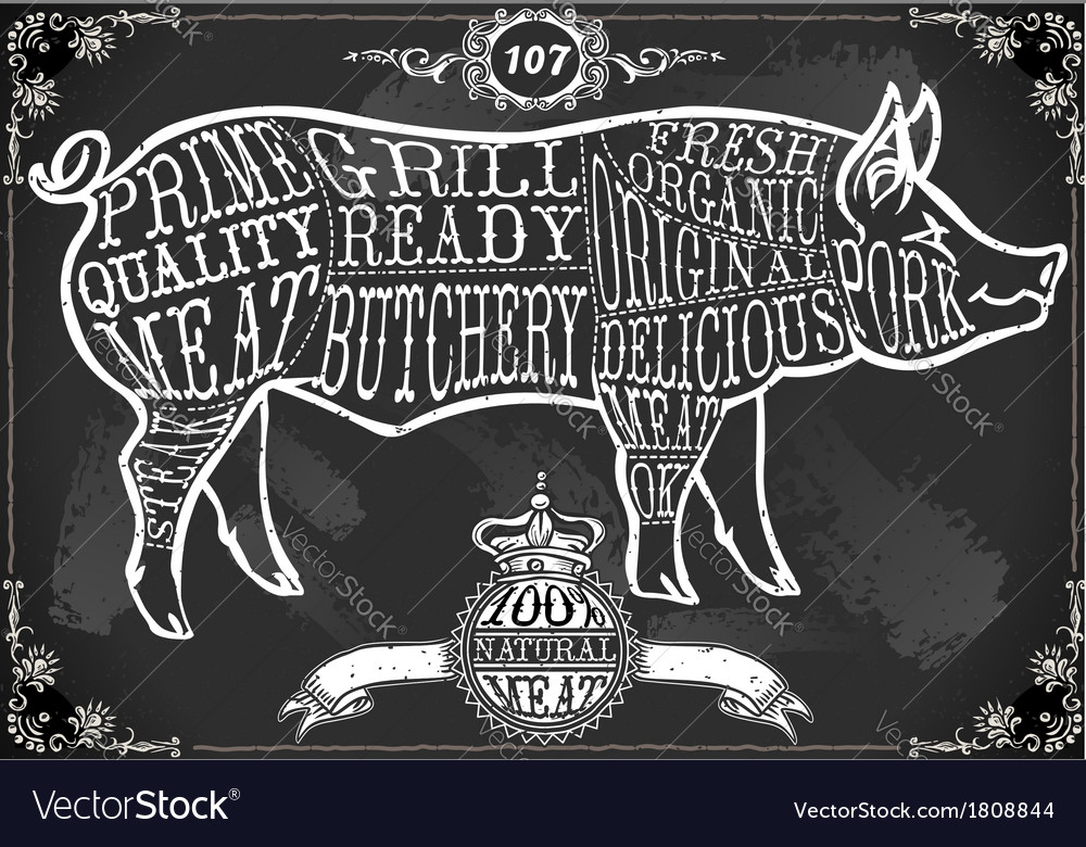 Vintage Blackboard Cut of Pork vector image