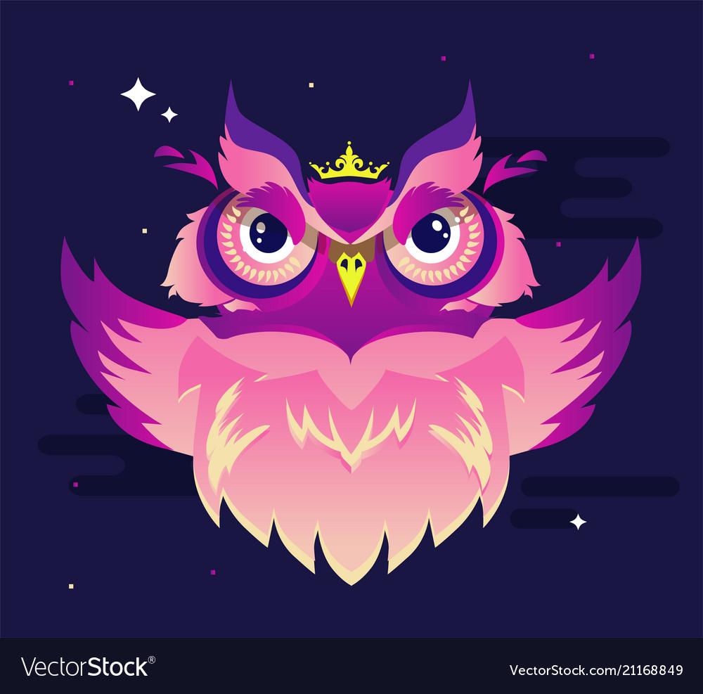 Decorative owl in vibrant color on a purple