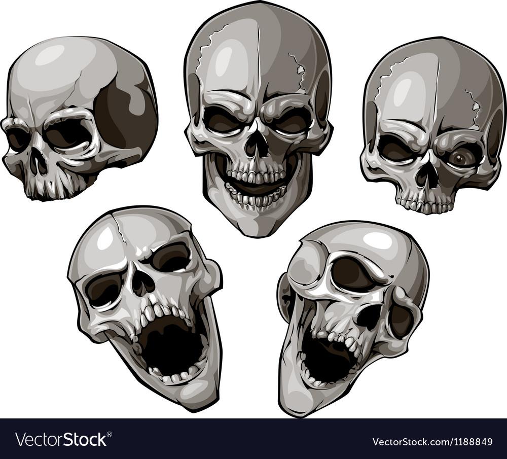 Skulls 4