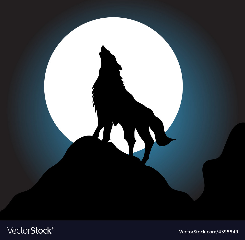 Wolf howling background vector image