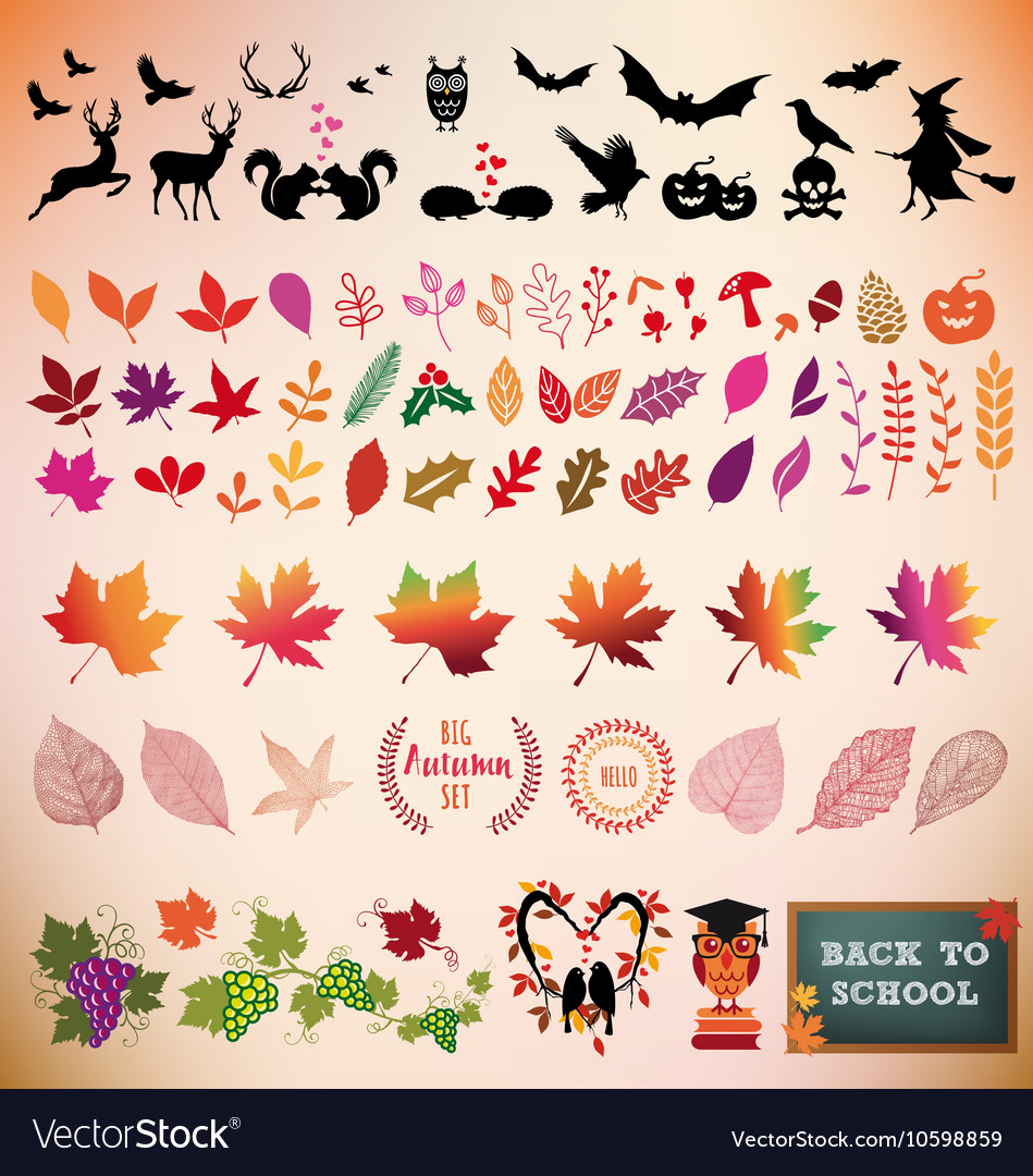 Autumn icon set design elements vector image