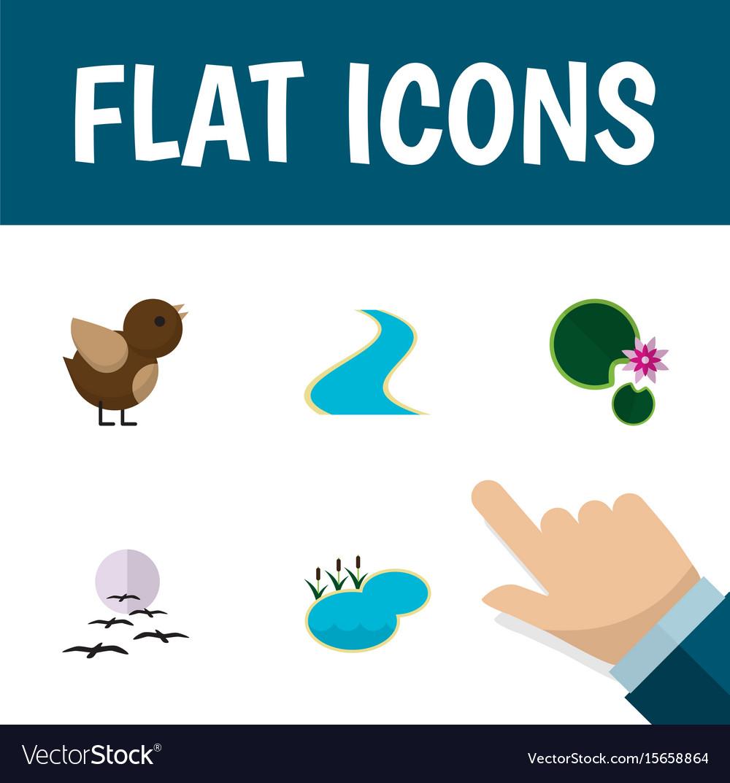 Flat icon bio set of tributary bird gull and