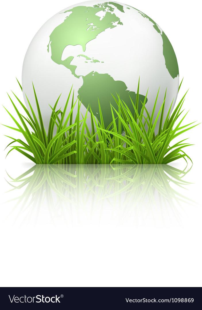 Globe on grass vector image