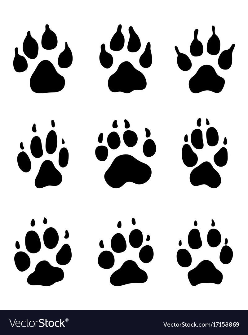 print of dogs paws royalty free vector image vectorstock rh vectorstock com dog paw vector image dog paw vector png