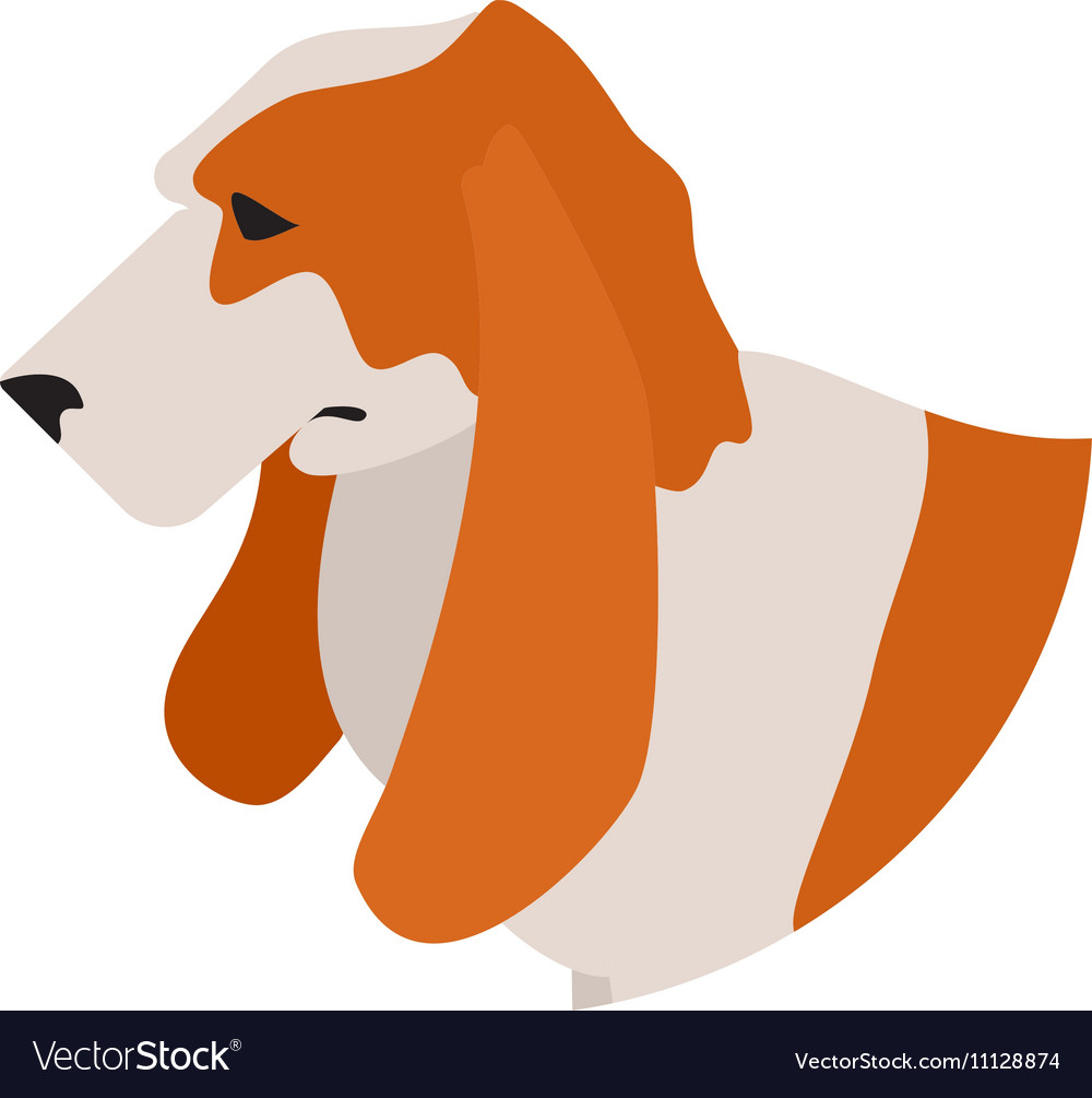 Dog head basset hound