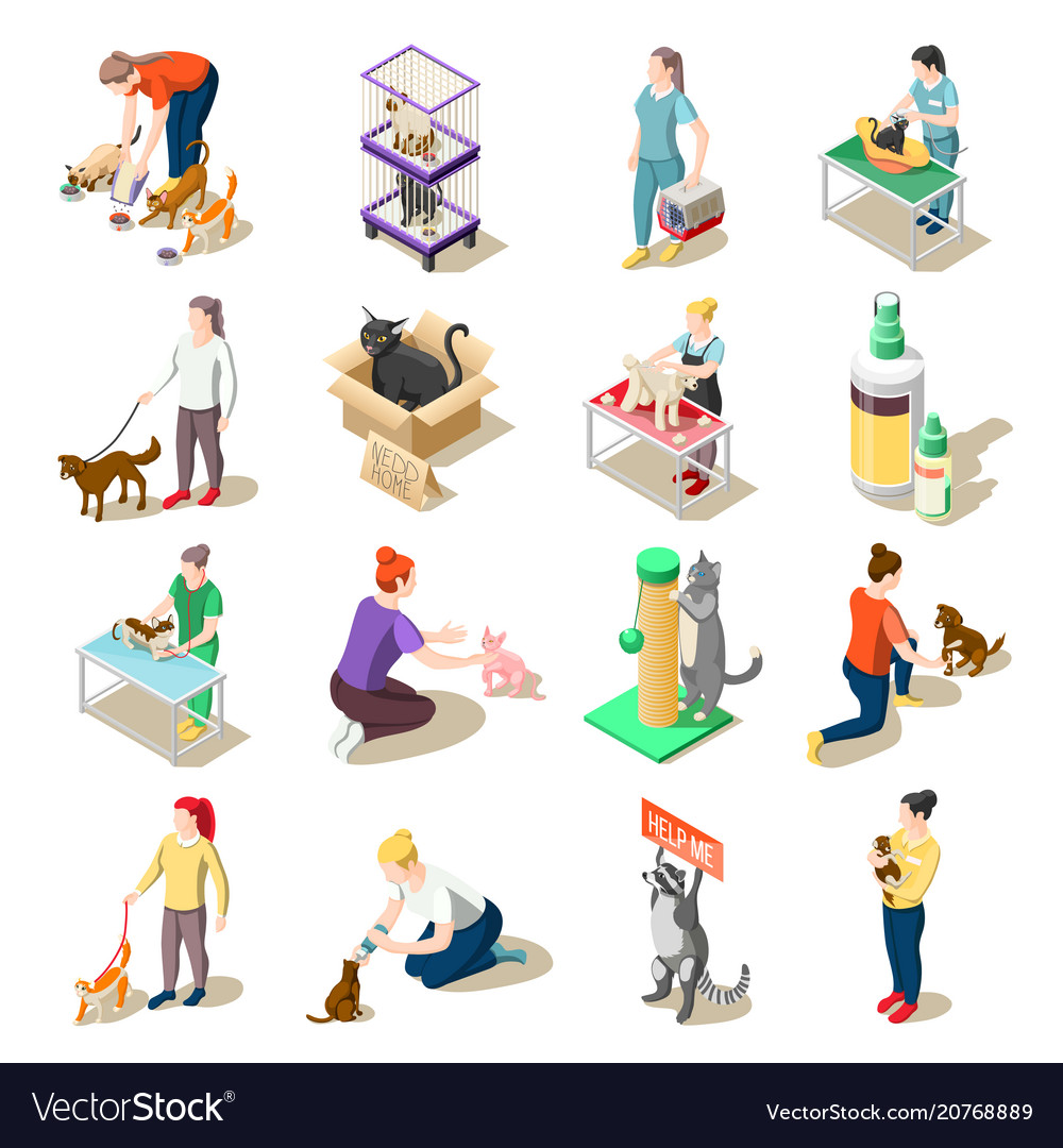 Animal care volunteers isometric icons vector image