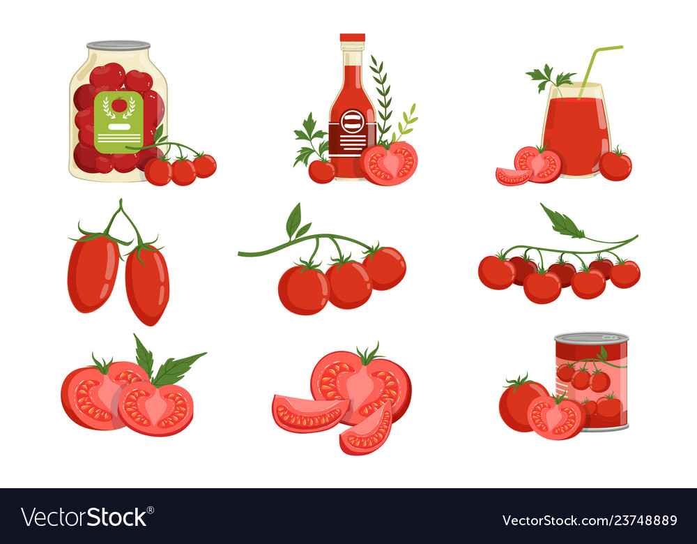 Fresh red healthy tomatoes and tomato products set