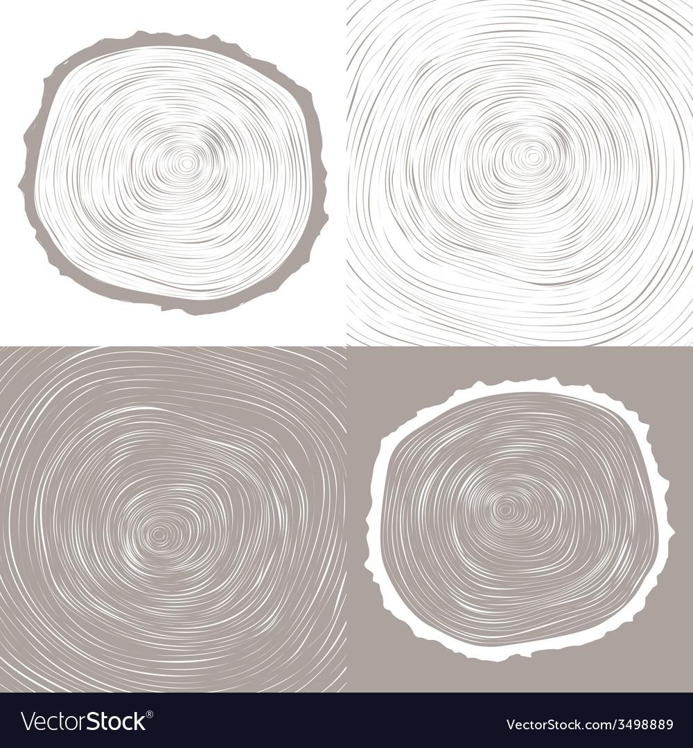 Tree wood slice natural years line circle ring