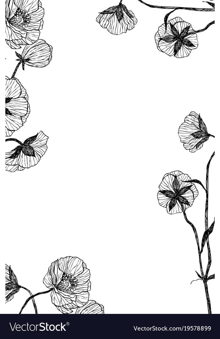 Vintage Botanical Flower Frame Vector Image