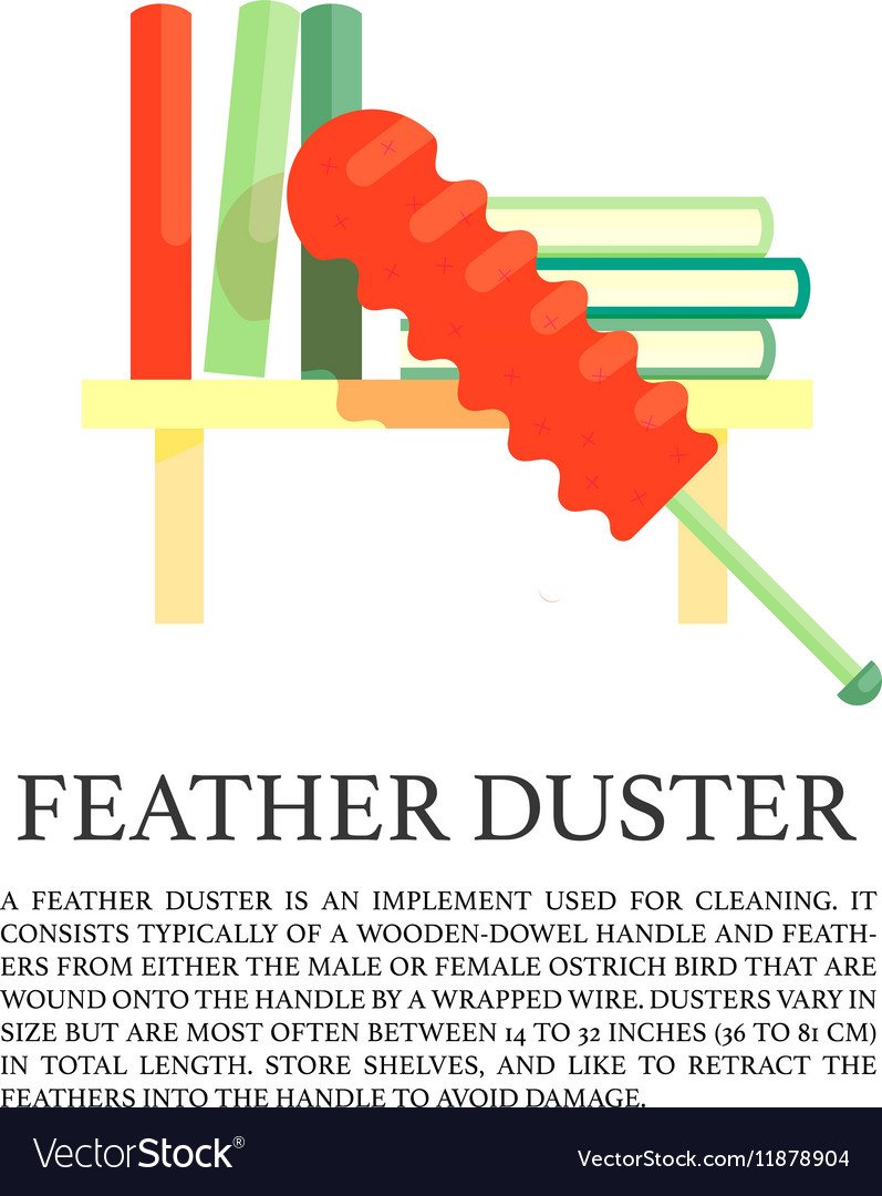 Feather duster concept vector image
